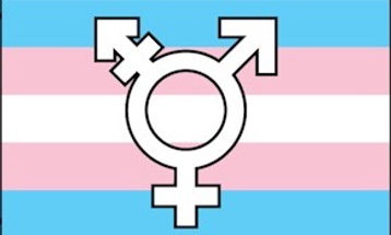 st. john's, nl, st. john's pride, rainbow, lgbt, lbgt, pride, parade, ally, allies, gay, bi, lesbian, queer, trans, two spirit