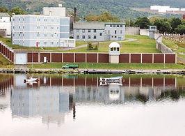 Community Coalition for Mental Health (CC4MH) Newfoundland and Labrador, The Telegram