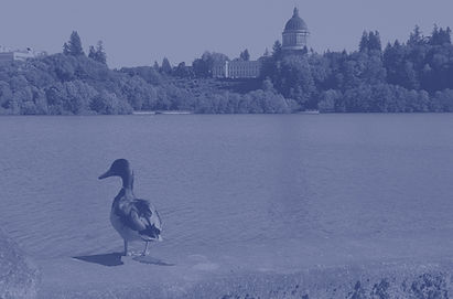 Duck%2520Cap%2520Lake_edited_edited.jpg