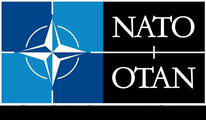 International Self Defense Academy e NATO