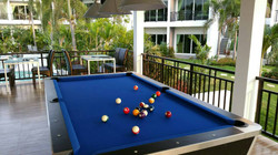 Pool Table/Billiard