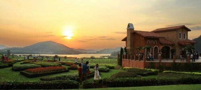 Silverlake Vineyards near the Serenity Resort Private Villa in Pattaya