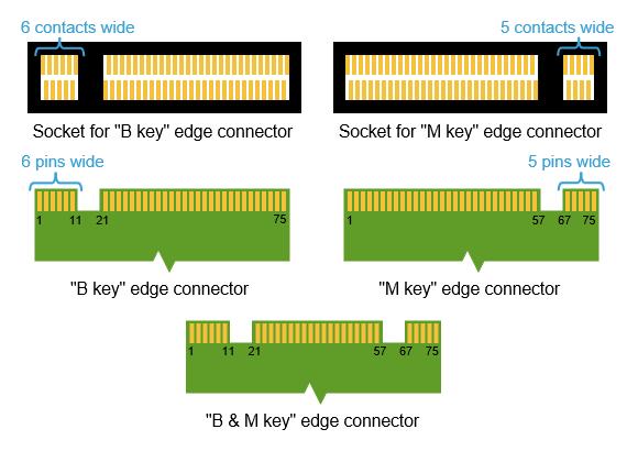 Các SSD tương thích với cả hai socket (key B & M), hoặc chỉ socket 2 (key B), có thể kết nối hai làn (x2); trong khi các SSD tương thích với socket 3 (key M) có thể kết nối lên đến 4 làn (x4).
