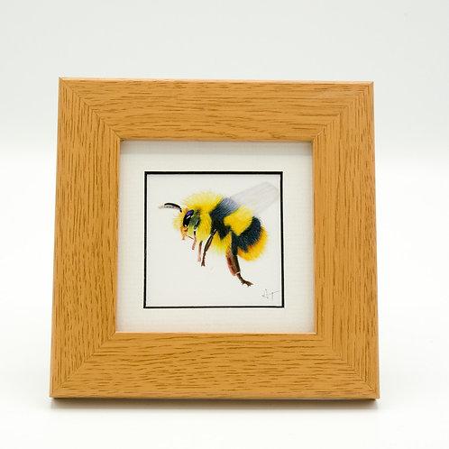 Bee Print Framed