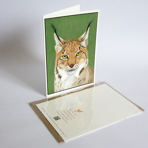 Eurasian Lynx. 5 Greeting Cards A6 when folded, with envelopes.