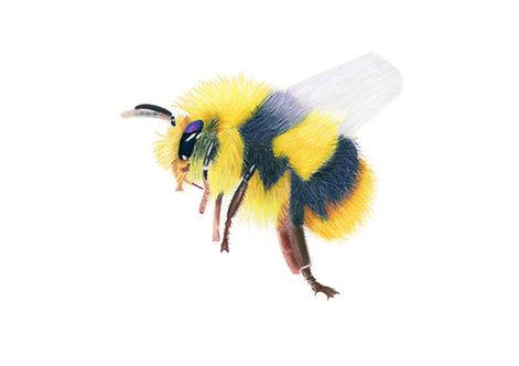 """Flight of the Bumblebee"" Giclée fine art print edition."