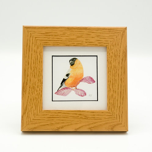 Bullfinch Print Framed