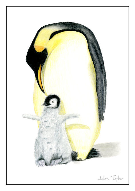 """Penguin & Chick""   5 Greeting Cards A6 when folded, with envelopes."