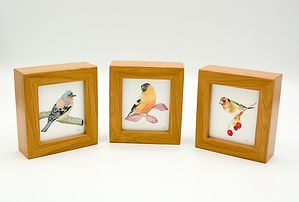bird-collection-print-frame-alan-taylor-
