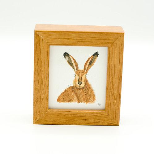 Hare Miniature Box Framed Art