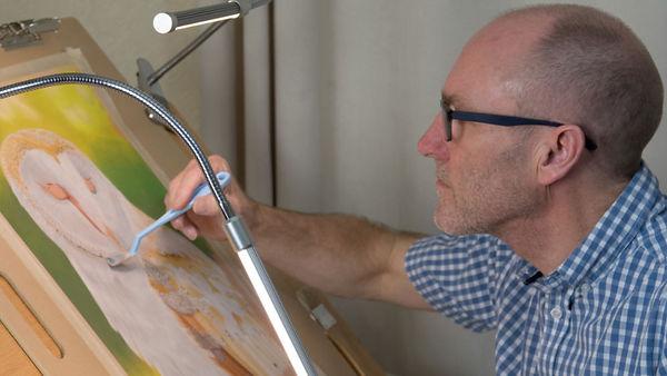 Alan Taylor Artist Barn Owl Pastel Painting