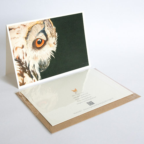 """""""Bubo bubo"""" - Eagle Owl.  5 Greeting Cards A6 when folded, with envelopes"""