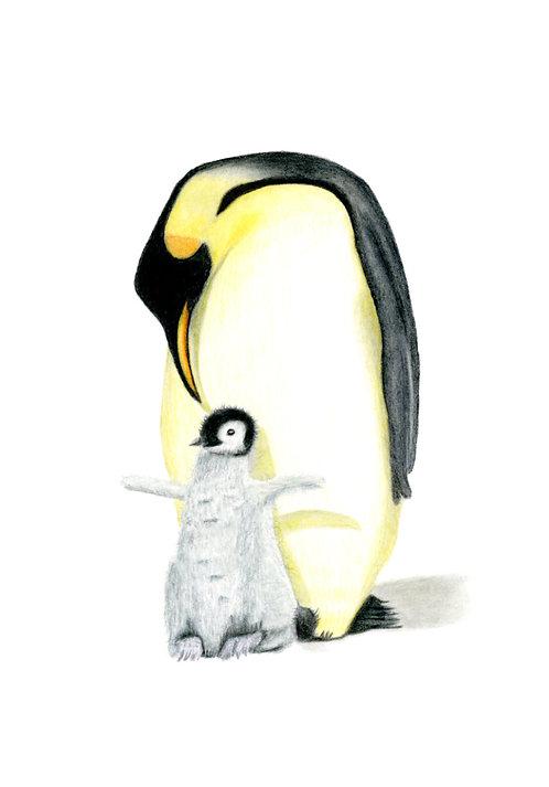 Penguin and Chick. Giclée fine art print edition.