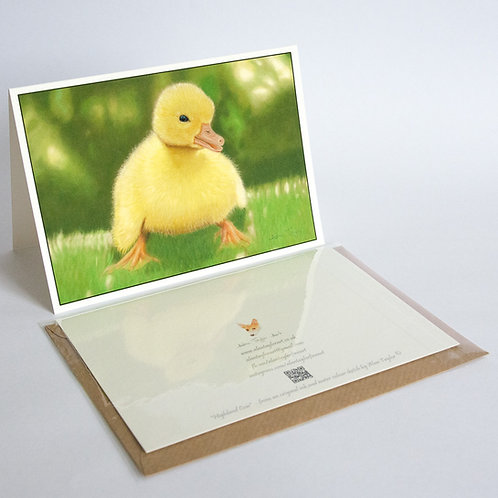 """""""Moby"""" - duckling.  5 Greeting Cards A6 when folded, with envelopes."""