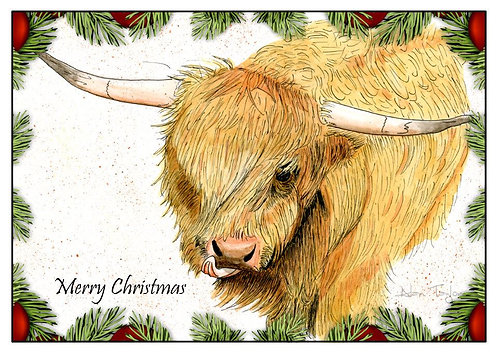 """Highland Cow"" 5 Xmas Greeting Cards A6 when folded, with envelopes."