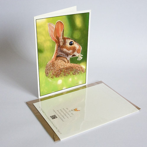 """""""Kit"""" - baby rabbit. 5 Greeting Cards A6 when folded, with envelopes."""