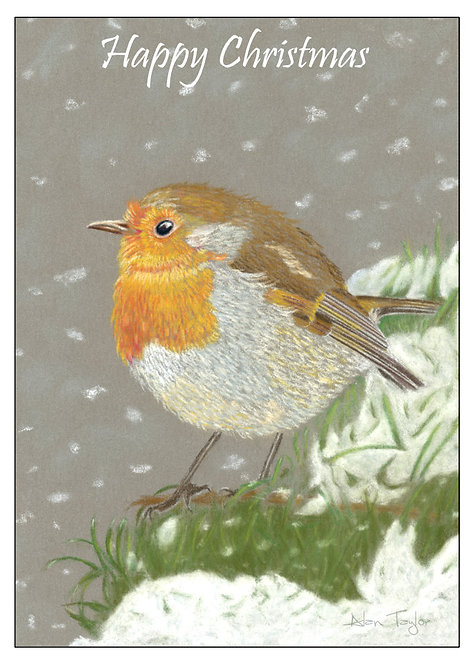 """Robin Red Breast""   5 Greeting Cards A6 when folded, with envelopes."