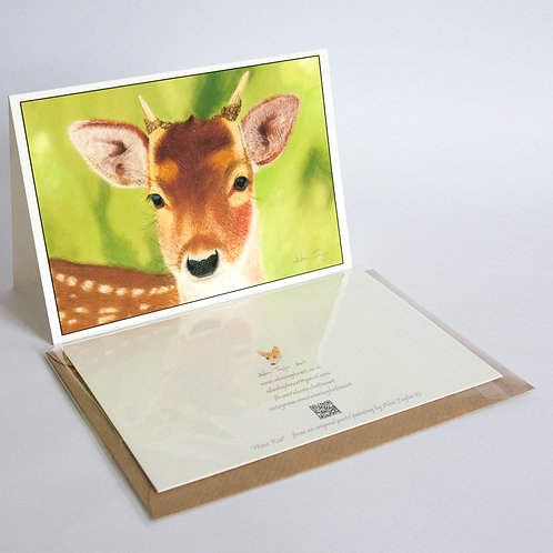 """""""Ivan"""" - the yearling Roe buck. 5 Greeting Cards A6 when folded, with envelopes."""