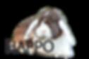happo2_edited.png