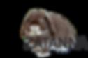 zatanna_edited.png