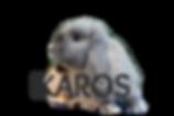 ikaros1_edited.png