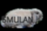 smulan2_edited.png