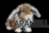 karamell_edited_edited.png