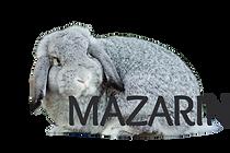 mazarin1_edited.png