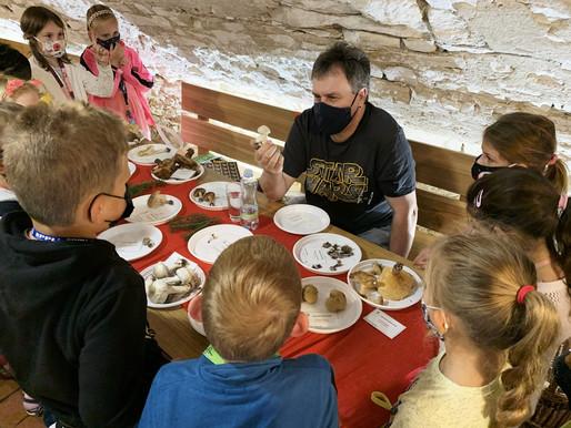 Na výstavě hub v muzeu bylo letos k vidění 150 druhů
