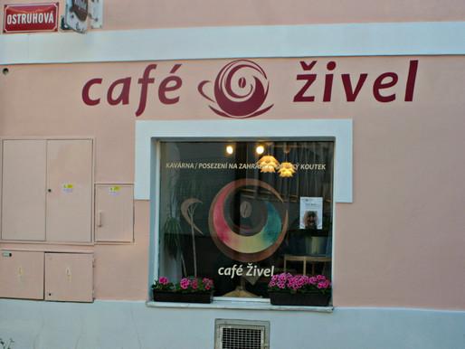Café Živel je prostě živel