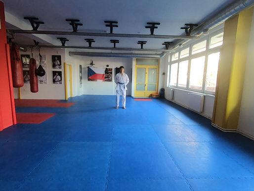 Mělnický taekwondista získal zlatou na světovém online turnaji