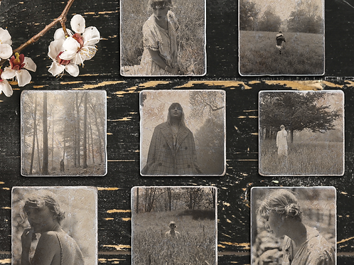 Taylor Swift Folklore Limited Edition Album Coasters