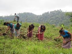 Agriculture & Nutrition Program