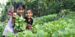 garden children_n