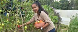 Lucia M Garden