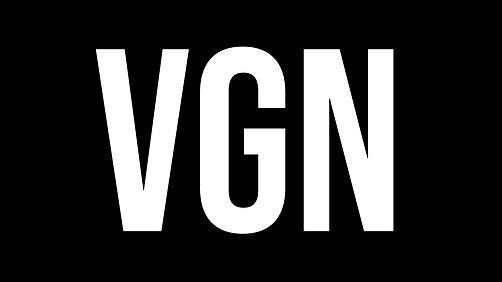 VGN Website (1).jpg