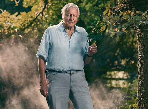 David Attenborough Extinction documentary highlights toll of animal agriculture on biodiversity loss