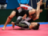 grappling mma strona.png