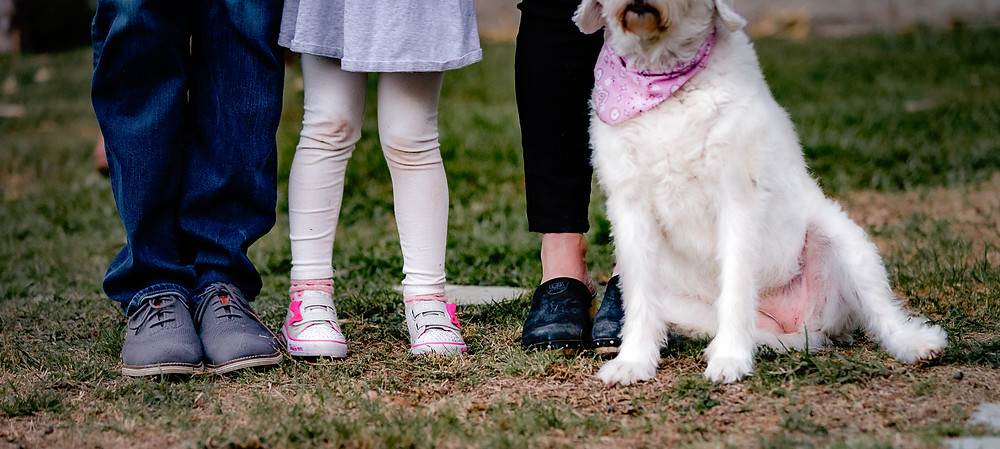 close up of family feet during lifestyle family photo shoot at home with mom, dad, little girl and family dog