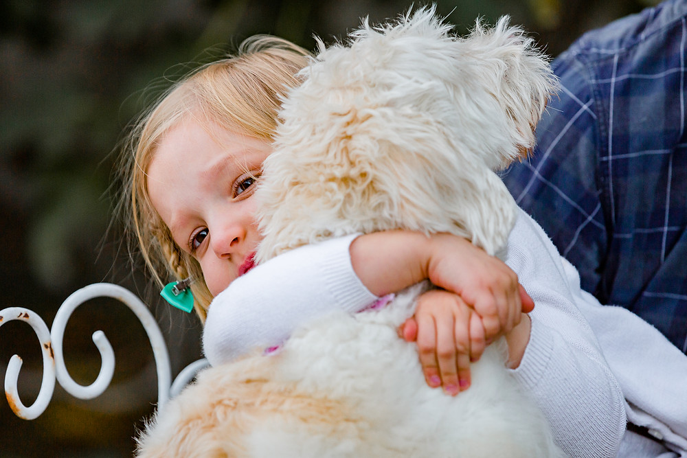 little blond girl hugging her white fluffy dog during a lifestyle family photo session