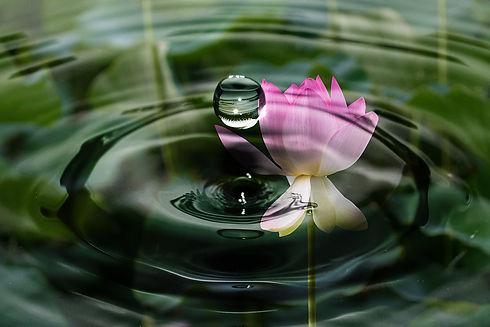 drop-of-water-2092495_1920.jpg