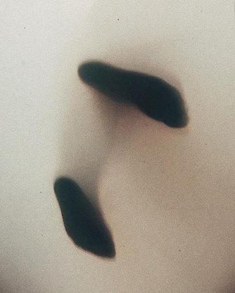 """Cloud Walker"" - limited print by Polocho"