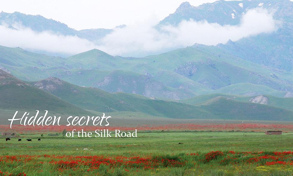 Hidden Secrets on the Silk Road
