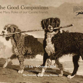 The Good Companions: The Many Roles of our Canine Friends