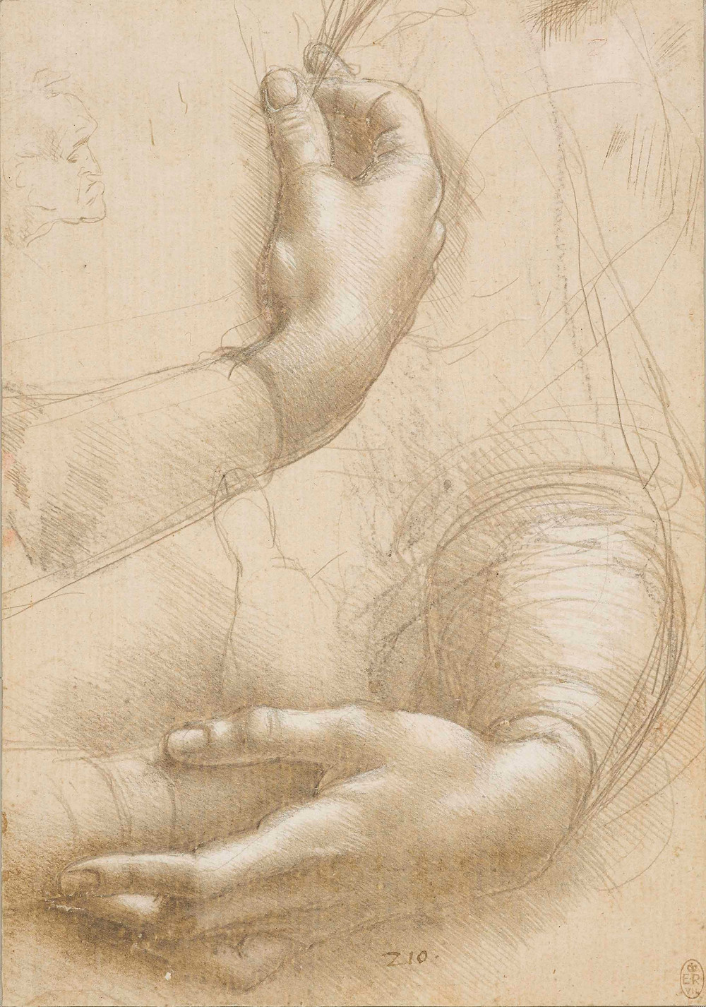 Leonardo da Vinci, A study of a woman's hands, c.1490. Royal Collection Trust/(c) Her Majesty Queen Elizabeth II 2019