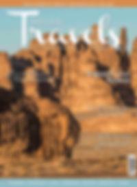 COVER Spring 2020.jpg