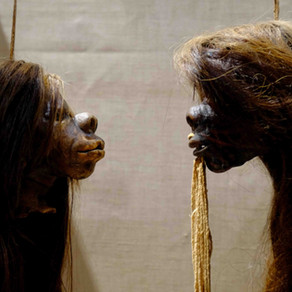 Pitt Rivers Museum reopening reveals critical changes to displays