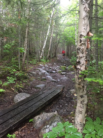 trail du boisé 2021 (23).JPG