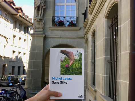 Michel Layaz- Sans Silke