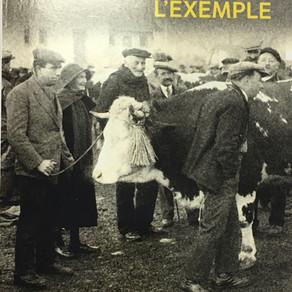 Jacques Chessex - Un juif pour l'exemple